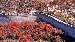 Autumn at Chinese Great Wall (gerard eder) Tags: world travel reise viajes asia eastasia easternasia china greatwall autumn otoño herbst chinesischemauer murallachina architecture arquitectura architektur historicsites historic paisajes panorama landscape landschaft natur nature naturaleza outdoor tree wall mauer muralla