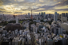 Tokyo Tower (Flutechill) Tags: cityscape urbanskyline skyscraper architecture urbanscene downtowndistrict city famousplace buildingexterior builtstructure tokyoprefecture officebuilding tower sky aerialview sunset business japan night tokyotower tokyo