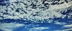 20180923_DP0Q4580-21x9 (NAMARA EXPRESS) Tags: landscape nature sky cloud 219 daytime autumn fall fine outdoor color toyonaka osaka japan spp spp661 foveon x3 sigma dp0 quattro wide ultrawide superwide namaraexp
