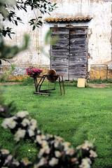 """"""" yard """" (Lillux1971) Tags: yard cortile maremma tuscia countryside sutri italy casale arnesi old vecchi porte doors lillo1971 giardino mola"""