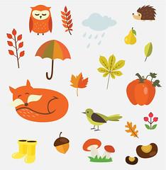 Illustrated flat vector Set Illustrated flat vector Set (isururangika) Tags: pumpkin bird umbrella leaf fox mushroom owl chestnut rosehip rain cloud rubberboots acorn hedgehog floralelement autumn