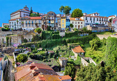 Invading Vines (mikederrico69) Tags: porto portugal europe cityline city buildings culture history old colorful color green vineyards vines plants rooftops roofs windows travel trip exploration visit town downtown