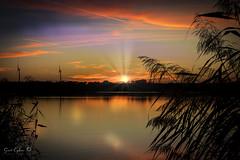 Glare (Geert E) Tags: sunset orange cane glare water colour sky sun