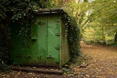 Autumn 2018 in south London | Sydenham Hill Wood-20 (Paul Dykes) Tags: london england unitedkingdom gb uk crystalpalace autumn fall autumncolours fallcolors