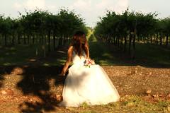 Paula & Daniel (marti.labruna) Tags: weddingday weddingdress weddinggown wedding marriedcouple justmarried married couple happiness tenderness love vineyard bride brideandgroom groom