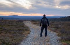 Trekking (Ville Airo) Tags: hike trek hiking trekking patikointi vaellus pallas ylläs suomi finland man horizon sunset path evening