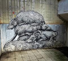 You could call this a hidden one... / #art by #ROA. . #strombeek #urbanart #graffitiart #streetartbelgium #graffitibelgium #urbanart_daily #graffitiart_daily #streetarteverywhere #streetart_daily #ilovestreetart #igersstreetart #rsa_graffiti #StreetArtCit (Ferdinand 'Ferre' Feys) Tags: instagram roa strombeek belgium belgique belgië streetart artdelarue graffitiart graffiti graff urbanart urbanarte arteurbano ferdinandfeys