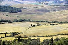 landscape.......... (atsjebosma) Tags: landschap hills heuvels weg gras atsjebosma pienza italy tuscani toscane trees bomen coth coth5