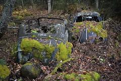 Opel Olympia & Volkswagen Beetle (Flash 86) Tags: opel olympia volkswagen beetle sweden sverige