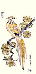 Golden pheasant (Japanese Flower and Bird Art) Tags: bird golden pheasant chrysolophus pictus phasianidae kiyomasu torii ukiyo woodblock print japan japanese art readercollection
