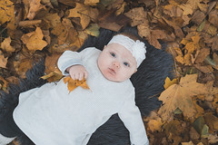 Faith (evizzlandin) Tags: baby babyphotography babyphotoshoot babies barn barnfotografering bebis bebisfotografering bebisfotograf child fotografering fotograf landinphotography landinfotografi photographer photography photoshoot autumn