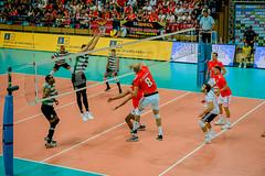 _FPV3428 (américodias) Tags: viana365 benfica sporting voleibol fpv