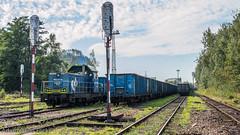 SM42-1291 (Adam Okuń) Tags: sm42 pkp cargo poland diesellok lokomotives