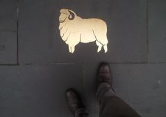 Golden fleece (WeFive5) Tags: street melbournetownhall sheep merino wool basalt swanstonstreetmelbourne streetart australianmerino