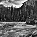 The Kicking Horse River Flowing By the Mountains at Natural Bridge (Black & White, Yoho National Park)