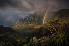 Jurassic (mattymeis) Tags: nikon kauai kalalau na pali hawaii mountain rainbow sunset light coast hawaiian island rrs matt meisenheimer dramatic