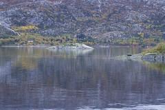 Høst  Autumn (O.Sjomann) Tags: høstt autumn yellow gult nature natur reflexion refleks speilbilde pastel pastell arcticseasport naurstad løding tverlandet bodø bodoe nordland northernnorway norway nordnorge norge canon7d canonef70300