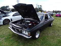 Holden Premier (FotoSleuth) Tags: holden premier kingswood hq hj hx hz