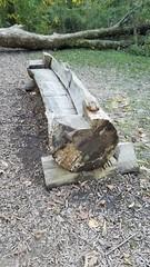 Blendon Woods Metro Park (dankeck) Tags: bench log blendonwoods metropark ohio park columbus centralohio franklincounty