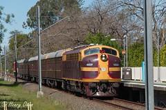 Through Poles (Henry's Railway Gallery) Tags: 4204 42class emd diesel clyde tuscan nswgr lvr lachlanvalleyrailway diesellocomotive heritagetrain passengertrain clarendonclassicmachineryrally eastrichmond richmond 8l09