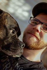 Me and My Buddy (Thunderwall) Tags: dog pet boxer brindle bullmastiff closeup close up portrait eyes friend glasses