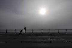 minimalistische aussicht (dadiolli) Tags: sylvenstein sylvensteinsee sylvensteinspeicher fog morning nebel morgennebel light licht bavaria bayern