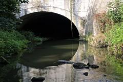_DSC0271 (Laugia) Tags: gier pont couverture rivière