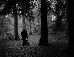 Autumn Walks BW (matthewblackwood10) Tags: autumn walks black white bw forrest stroll pram baby son uncle nephew path leaves tree trunk dark spooky woods kilmarnock dean castle park country ayrshire uk