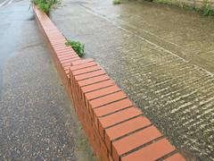 Sunday, 23rd, Wet wall IMG_6450 (tomylees) Tags: lakesroad wall raining braintree essex september 23rd 2018 sunday project 365
