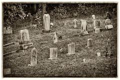 Remember (jmhutnik) Tags: nitro ridenourlake cemetery graves headstones nik overgrown sepia