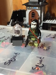 They're Mallah and The Brain (Lord Allo) Tags: lego dc doom patrol monsieur mallah the brain