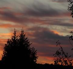 Crépuscule (Guillaume Auberget) Tags: crépuscule soir ciel arbres nuages