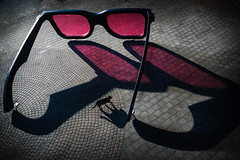 Gulliver's glasses (Ulrich Neitzel) Tags: big brille cat glasses gulliver katze large mzuiko1240mm olympusem1 pink rosa shadow schatten seapink art