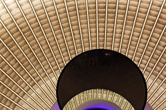Glowing core [4/4] (Pascal Volk) Tags: berlin mitte unterdenlinden bebelplatz sthedwigskathedrale sthedwigscathedral catedraldesantaeduvigis rebeccahorn glowingcore installation berlinmitte rebeccahornsankthedwig spiegelung reflexion reflection reflexión reflejo réflexion kirche church iglesia herbst fall autumn otoño 50mm canoneos6d sigma50mmf14dghsm|art 50mmf14 50mmlens unpointquatre onepointfour niftyfifty manfrotto mt055xpro3 468mgrc2 dxophotolab