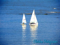 LEARNING  TO  SAIL (elbetobm thanks +9.600.000 views) Tags: learning to sail nautilus yachting club canon power shot sx130 is montevideo uruguay south america rio de la plata blue sailboat scool school river sun colors wave flickr elbetobm photographer boat yacht art punta carretas rambla reflection teacher pupil lightblue rocks white les voiles race maritime image gorgeousimage superb capture beautiful lovely picture appealing scene wind landscape outdoor tranquility water boats spring springtime returningtodock port marine returningtothemarine wonderfultake puntacarretas