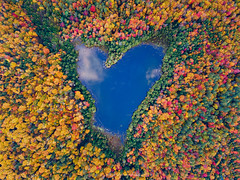 'Love' ly New England (rajaramki) Tags: newengland heart fallcolors autumn pond vermont newhampshire dji drone