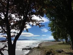 Le Léman à Vidy (Iris_14) Tags: lausanne vidy vaud lacléman suisse schweiz switzerland nature automne plage lac léman genevalake romandie