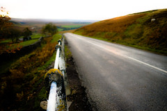 Weardale (tonguedevil) Tags: landscape outdoor view countryside colour light autumn road sheep moorland barn river bollihope weardale