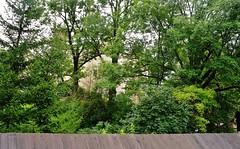 2014-08-14 Niedzica - zapora i  jezioro Czorsztyńskie (23) (aknad0) Tags: niedzica jezioroczorsztyńskie krajobraz zapora jeziora zalew drzewa