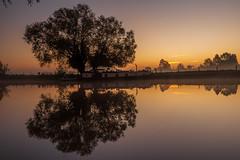 Sonning-181010-104302.jpg (mike_reid.5710) Tags: em1ii trees olympus berkshire river olympushiresshot sonning thamesvalley reflection sunrise boats dutchbarge england landscape
