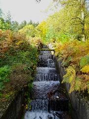Autumn, Lower Cascade, Blaen Bran Reservoir, Upper Cwmbran 17 October 2018 (Cold War Warrior) Tags: cascade autumn cwmbran blaenbran