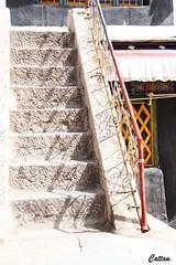 Drepung Monastery, 哲蚌寺, Tibet, China (cattan2011) Tags: tradition culture buddhism monastery shadow railings traveltuesday travelphotography travelbloggers travel architecture architecturephotography doorway stairs landscapephotography landscape 中国 西藏 拉萨 lhasa drepungmonastery 哲蚌寺 tibet china