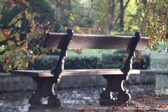 Autumn      KINN Paris  Anastigmat   F. 105   1 ; 4,5 (情事針寸II) Tags: oldlens bokeh autumn nature park bench autumnleaves kasteelcoloma