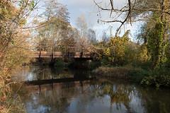 Dorzecze rzeki Rawki (WMLR) Tags: pentax k1 hd pentaxd fa 2470mm f28ed sdm wr