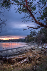 wet coast of Van Isle (kellypettit) Tags: canada vancovuerisland water westcoast nanaimo northwestcoast eastcoastofvancouverisland earlymorning sunrise coloursofmorning