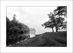 Into Derwent Water - HFF - 2018-10-01st (colin.mair) Tags: bw black derwentwater filter hdr hawes lakedistrict nd4 white border fence fog jetty monochrome trees