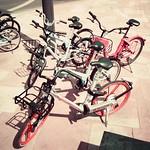 Land of bikes thumbnail