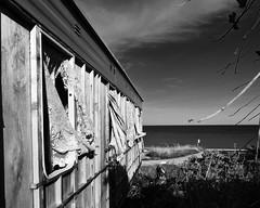 Close to the edge. (WolfBlass1) Tags: yorkshirecoast skipsea england flickr coastalerosion abandoned crumbling caravan water sea nikon d5300 nikkor 1685dxvr blackandwhite