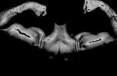 BICEP ART (bobroberts1850) Tags: muscles muscular biceps blackandwhite muscle flex flexing muscleart bicepart