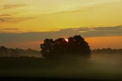 The Morning Light (Klaus Ficker --Landscape and Nature Photographer--) Tags: sunrise sonnenaufgang morning nebel fog kentuckyphotography klausficker canon eos5dmarkiv 5dmarkii
